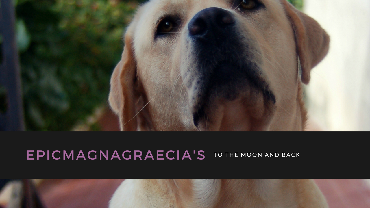 EpicMagnaGraecia's To The Moon And Back